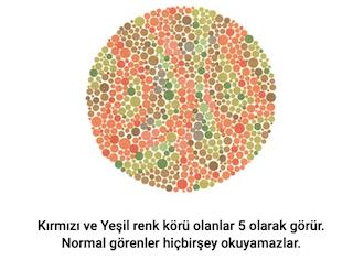 gorsel-6