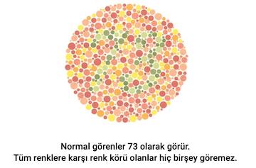 gorsel-5